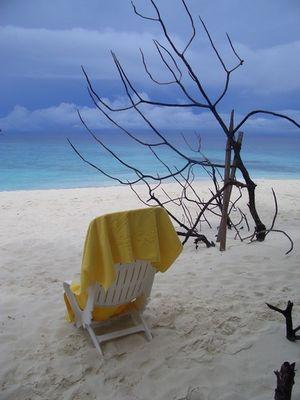 Ein Sturm zieht auf im Paradies....