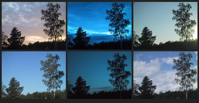 Ein Tag am Fenster
