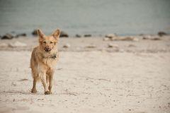 ein tag am strand - Unterbilk