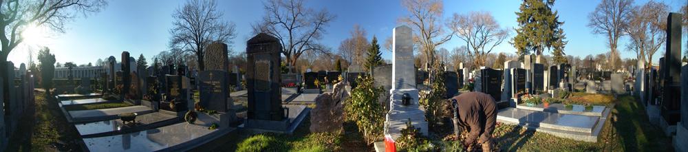 Ein Tag am Wiener Zentralfriedhof