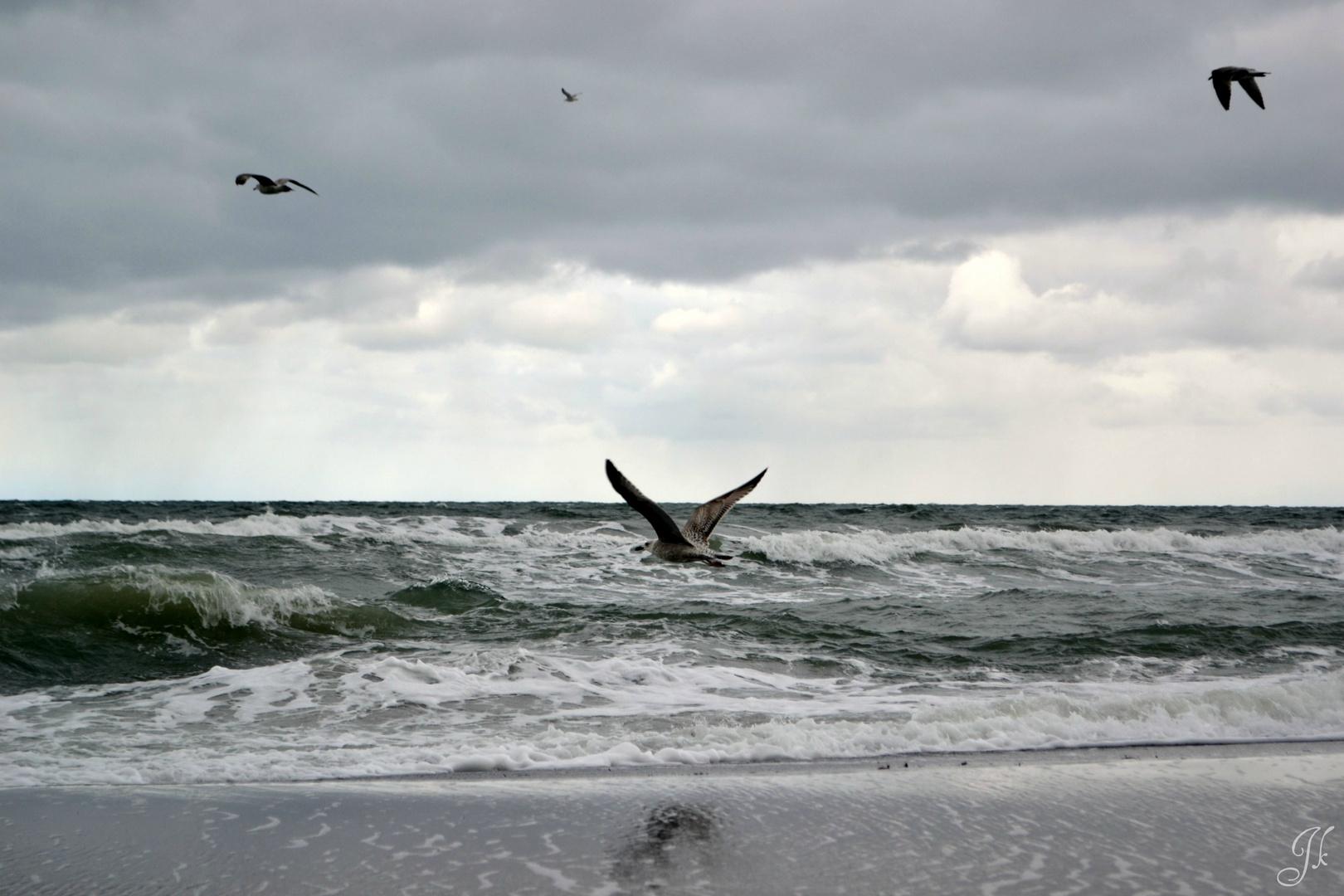 Ein Tag an der Ostsee.