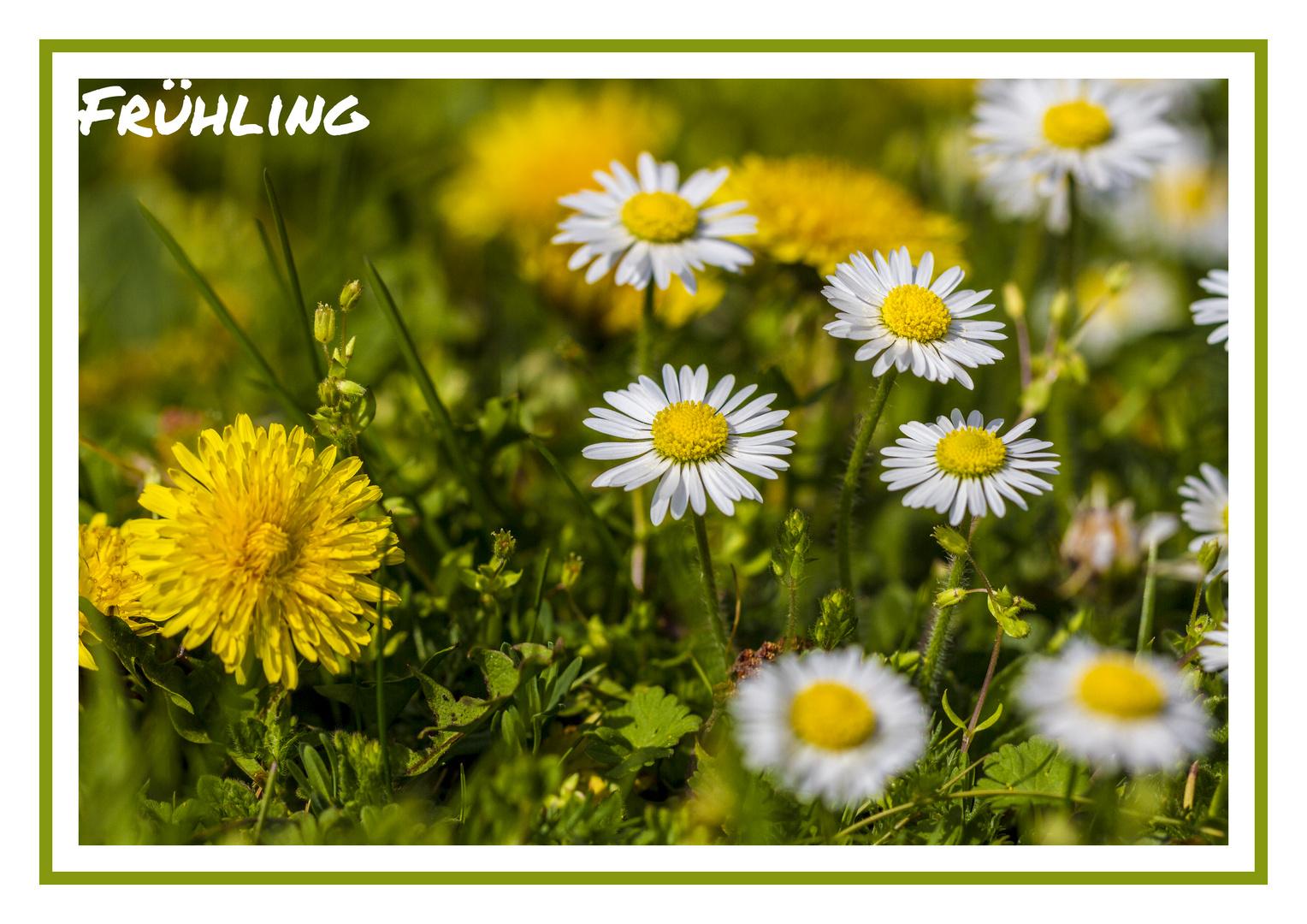 Ein Tag im Frühling II