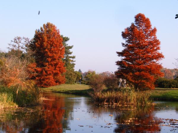 Ein Tag im Herbst