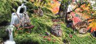 ein Tag im Märchenwald von Ondrej Hruby