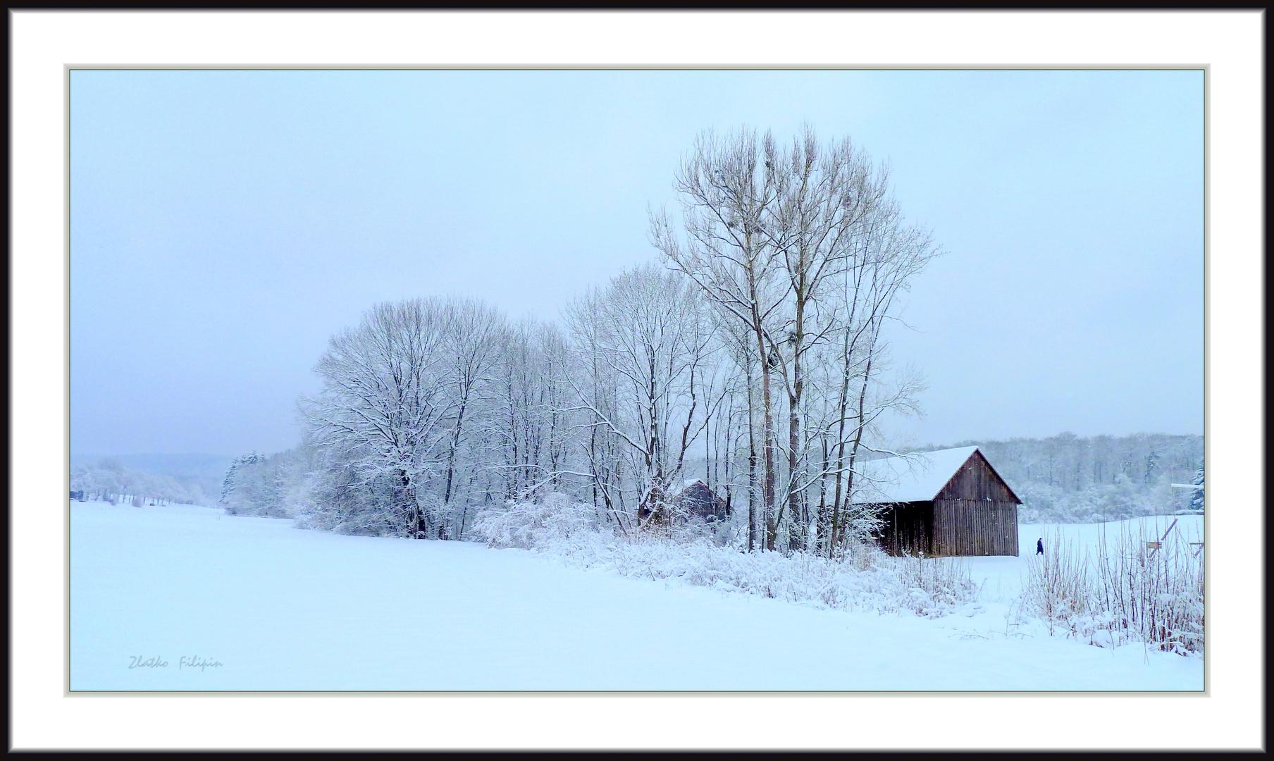 *** Ein Tag im Winter ***