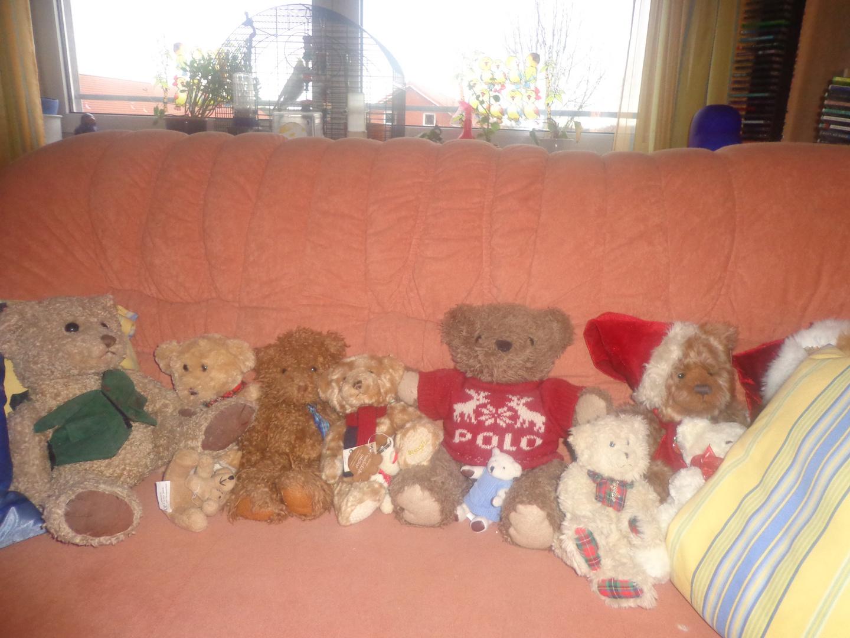 Ein Teddy kommt selten allein