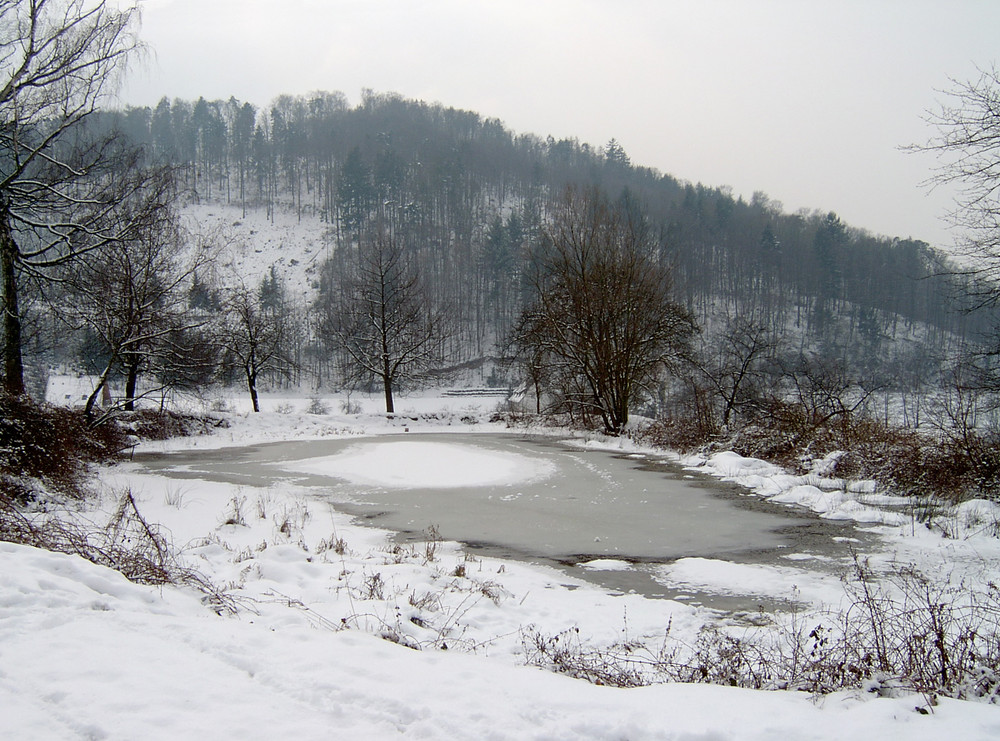Ein Teich in einem Kaff bei Freiburg