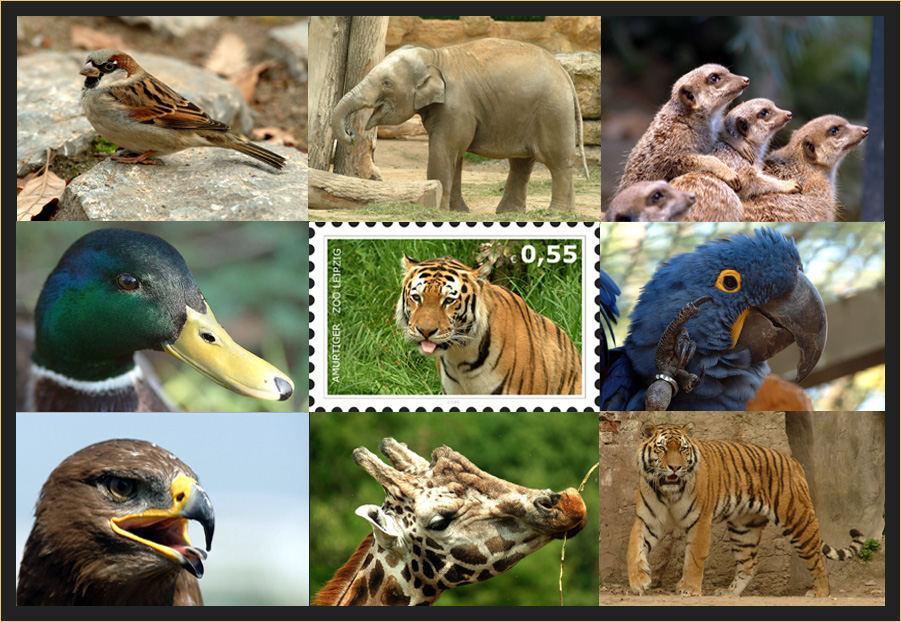 ein tierisches Jahr geht zuende....