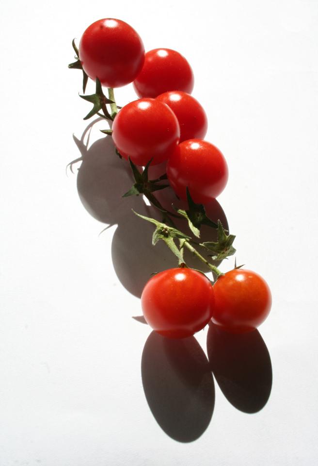 Ein Tomaten-Tier