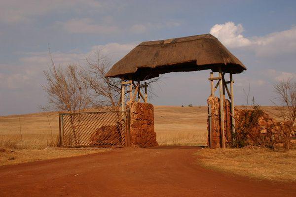 Ein Tor im Krugerpark