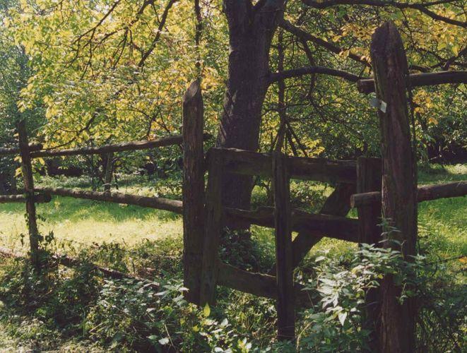 Ein Tor zur ...