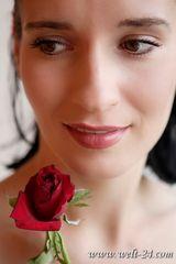 Ein Traum von einer Rose...
