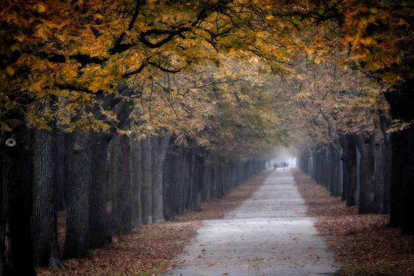 Ein trüber Herbsttag