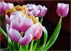 ein Tulpenstrauss