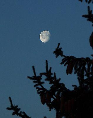 Ein Versuch, den Mond zu bannen....