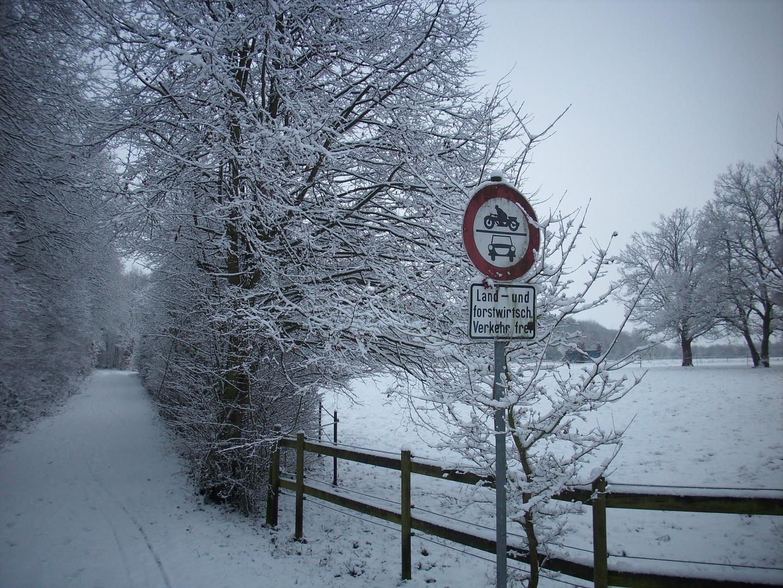 ein wahrer Winter