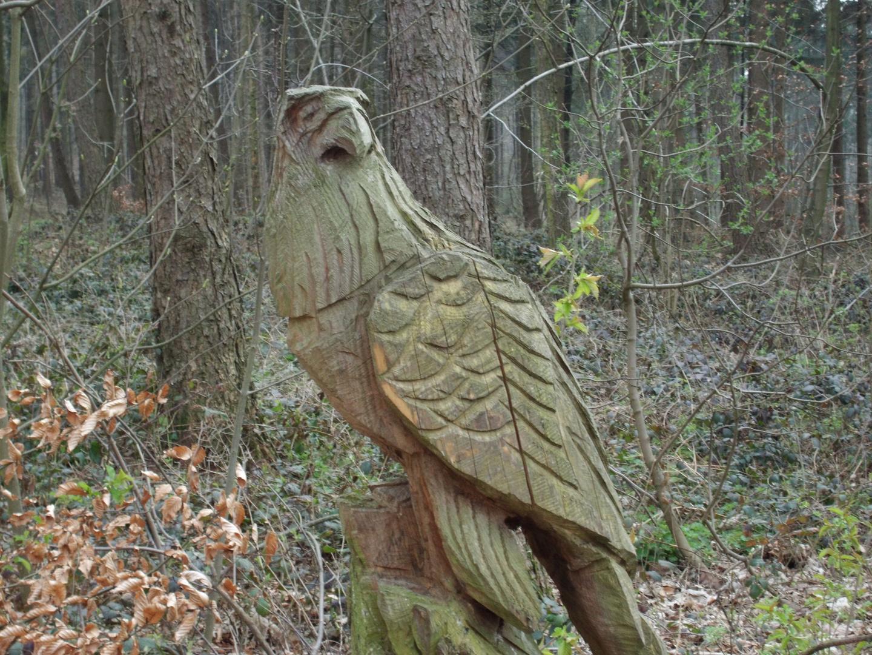 Ein Waldwächter
