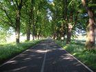 Ein Weg ins Niemansland