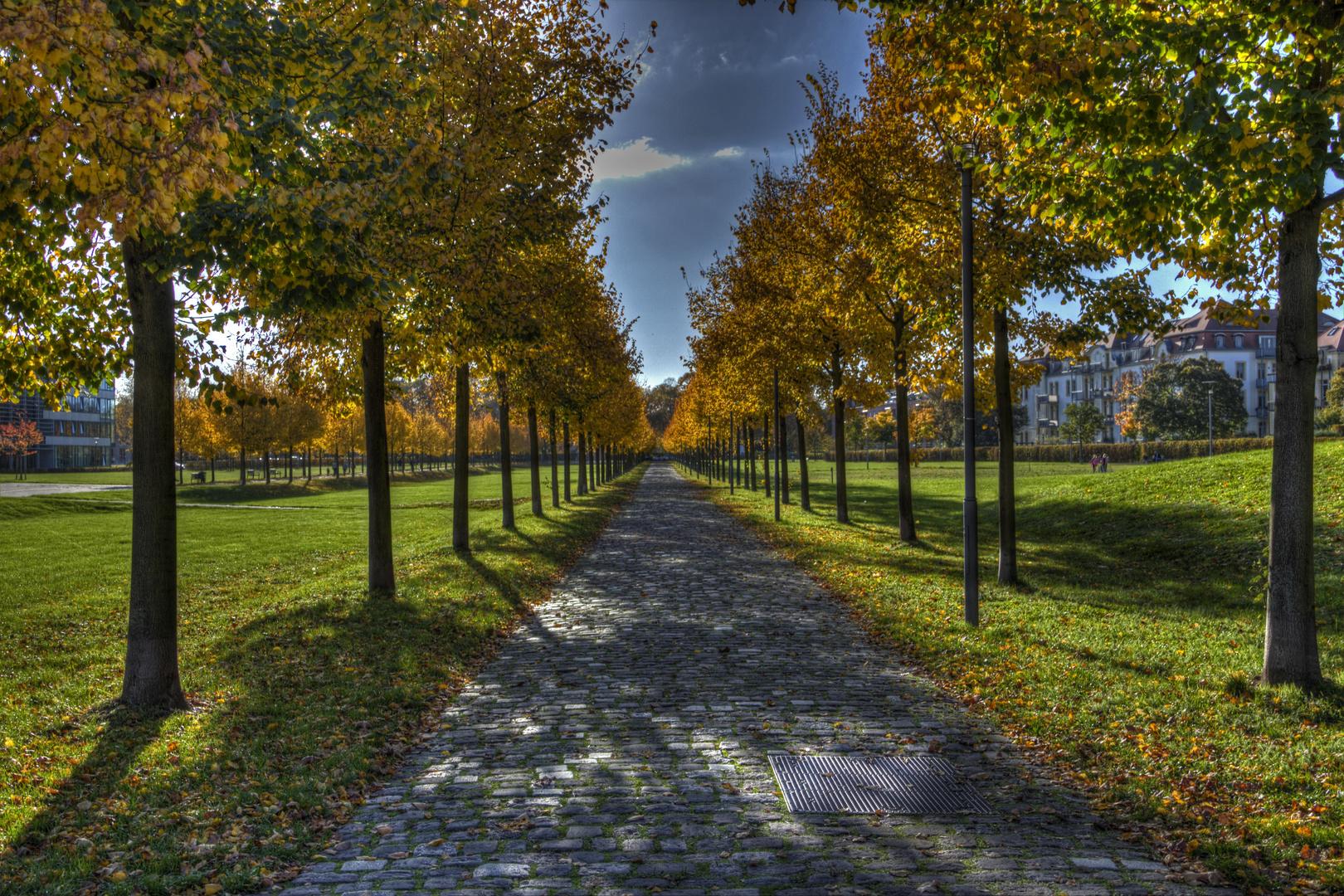 """""""Ein Weg"""" zum Schloss im Herbst"""