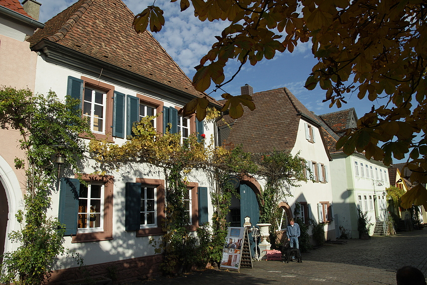 Ein Weindörfchen in der Pfalz