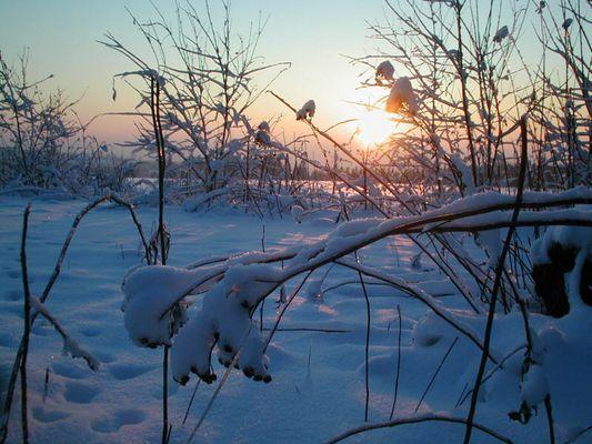 Ein Winter-Nachmittag im Vogtland