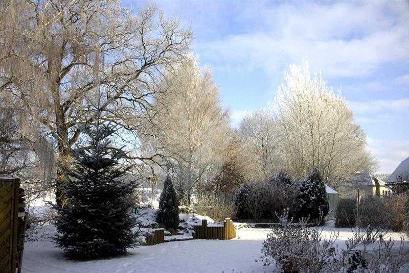 """ein """"Wintergarten"""""""