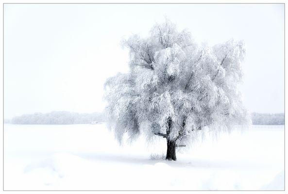 *ein Wintermärchen*