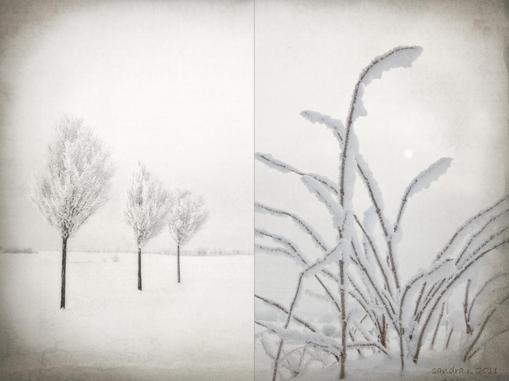 *ein WintermärchenII*