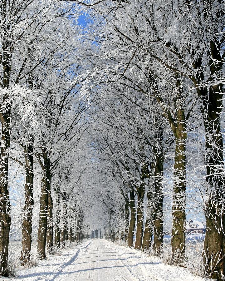 ein Wintermorgen im Flachland