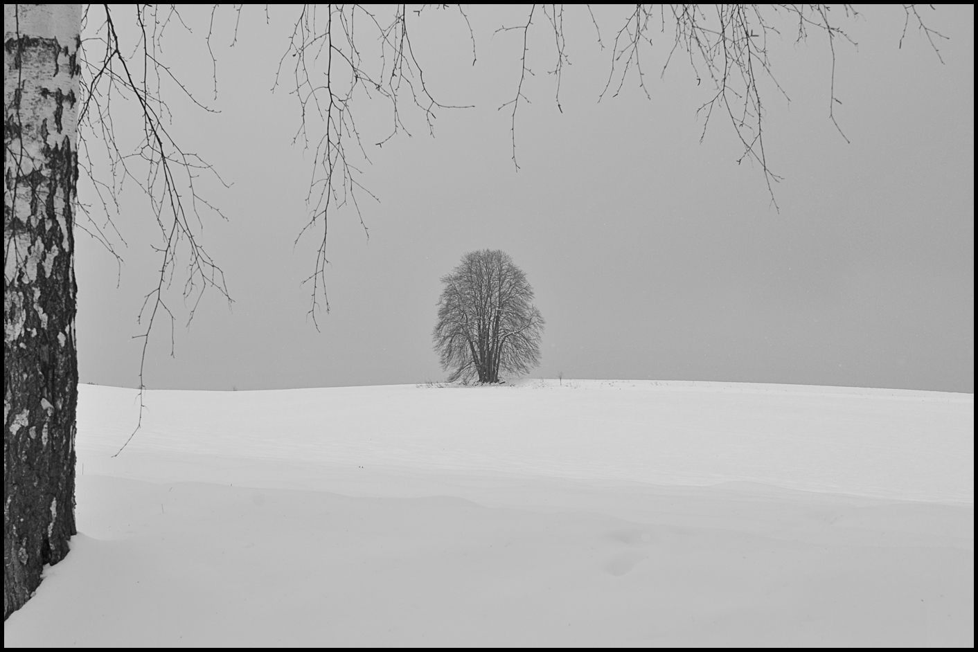 ***   ein wintertag    ***