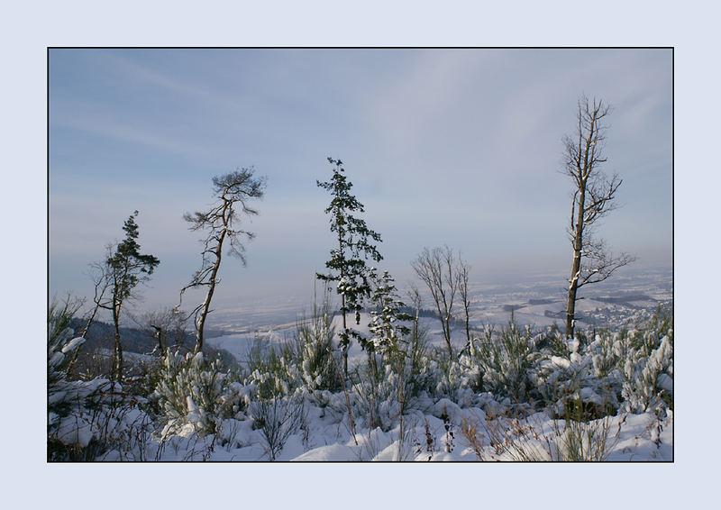 Ein Wintertag....