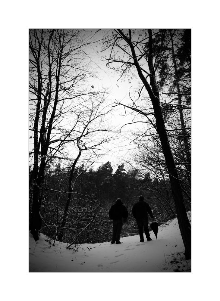 Ein Wintertag im Forst