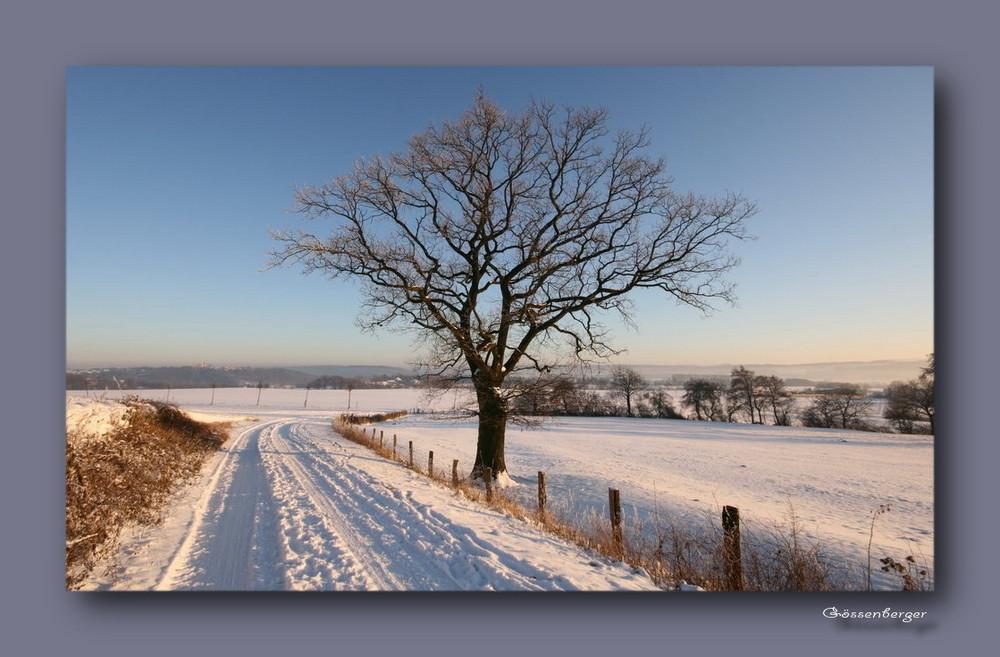 ~ Ein Winterweg ~