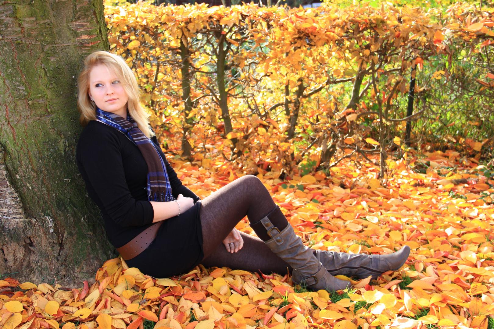 Ein wunderschöner Herbsttag Nr.2