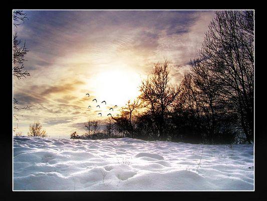 Ein wundervoller Winter