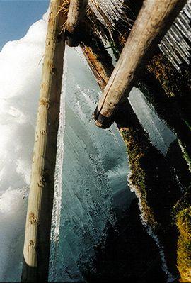 Einblick in die Welt des Wassers