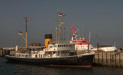 """Ein/der """"Wal"""" im Hafen von Helgoland"""