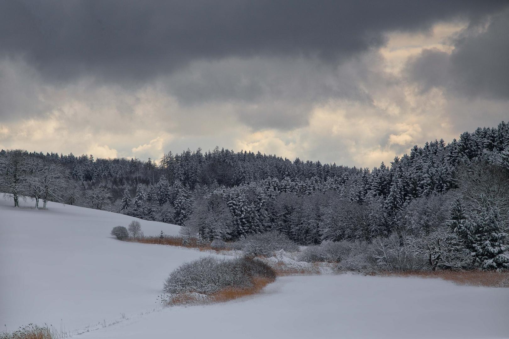 Eindrucksvolles Wintergrau