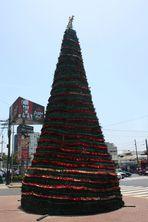 Eine andere Art von Weihnachtsbaum ...