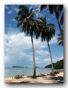 Eine Ansichtskarte aus dem Paradies ...