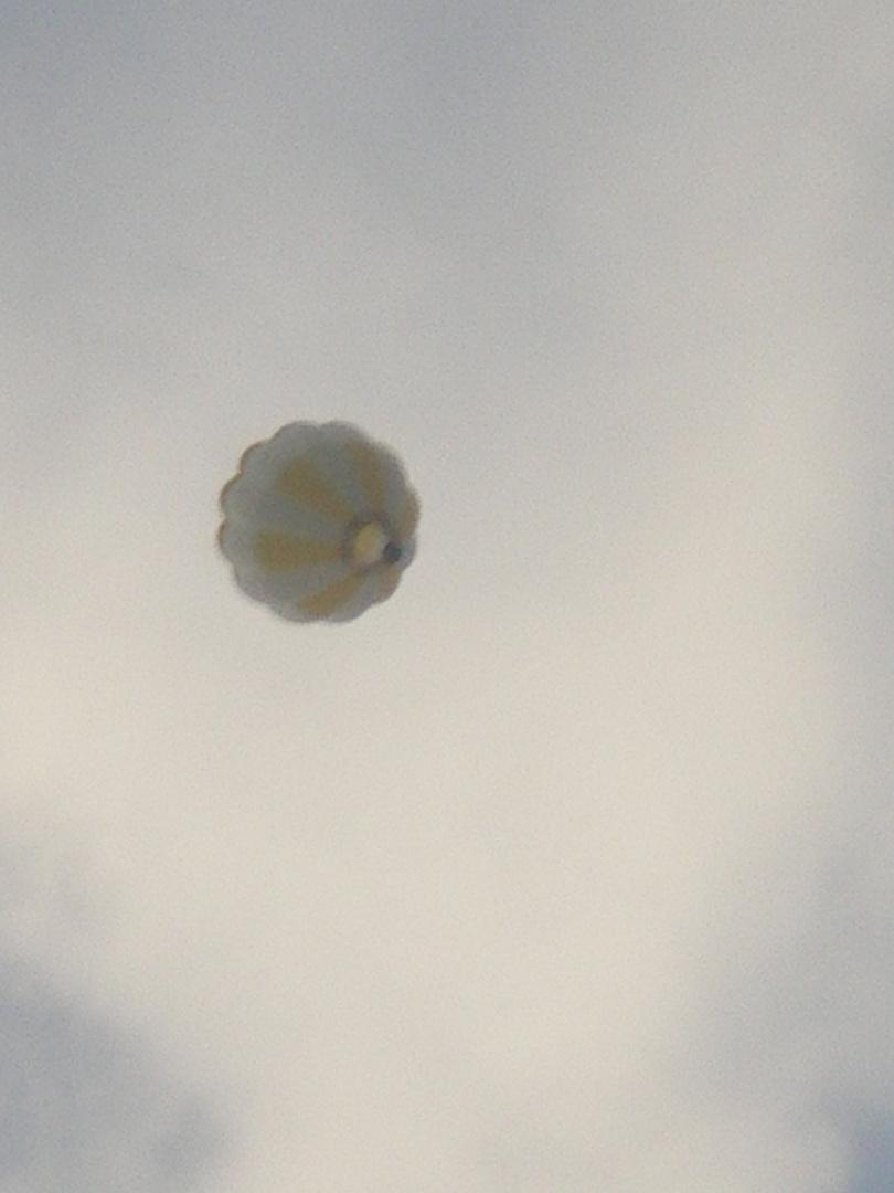Eine Ballon fahr, die ist lustig...