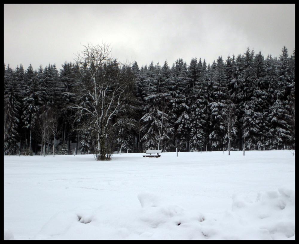 Eine Bank im Schnee