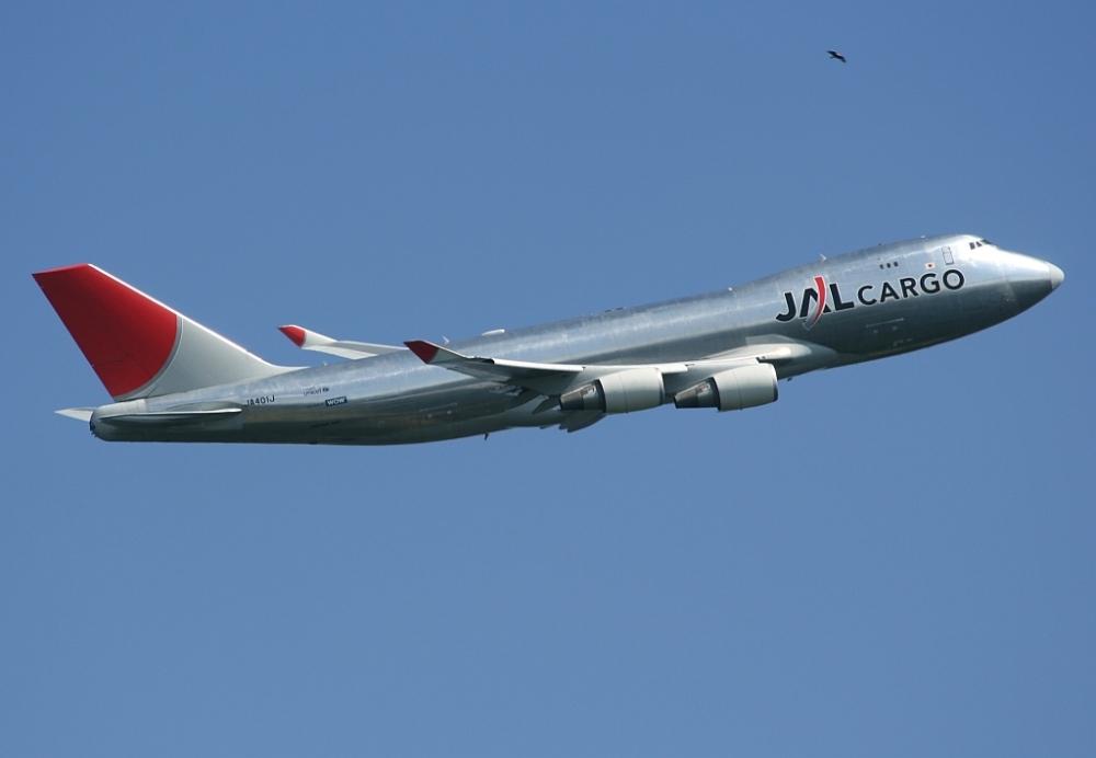 Eine Boeing 747 (Jumbo) der Japan Airlines kurz nach dem Start
