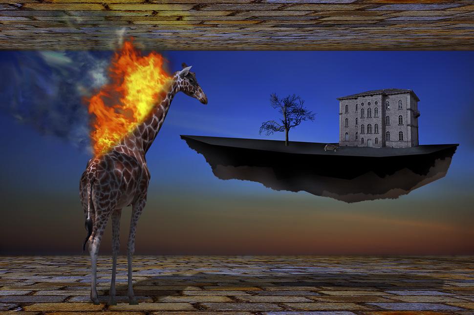 Eine brennende Giraffe betrachtet die graue Welt