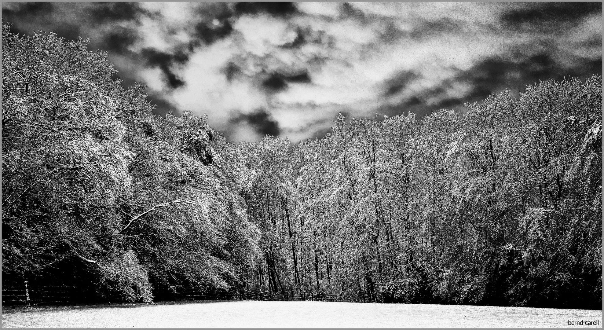 Eine - ein wenig - solarisierte Winterimpression