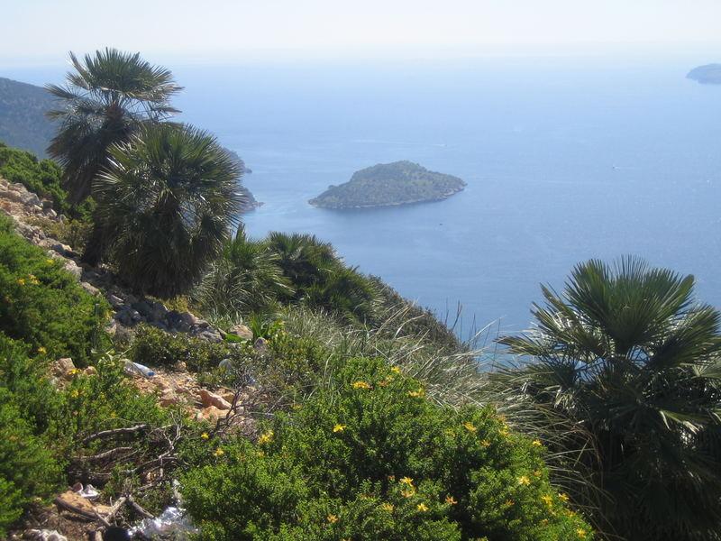Eine einsame Insel