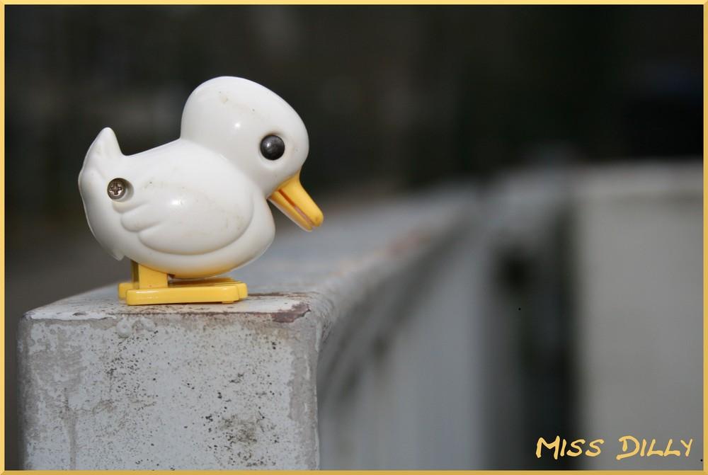 Eine Ente auf Reisen...