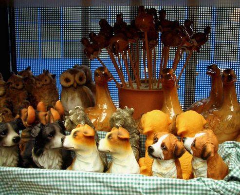 Eine etwas ungewöhnliche Tierhandlung