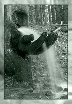 Eine Hand wäscht die ...