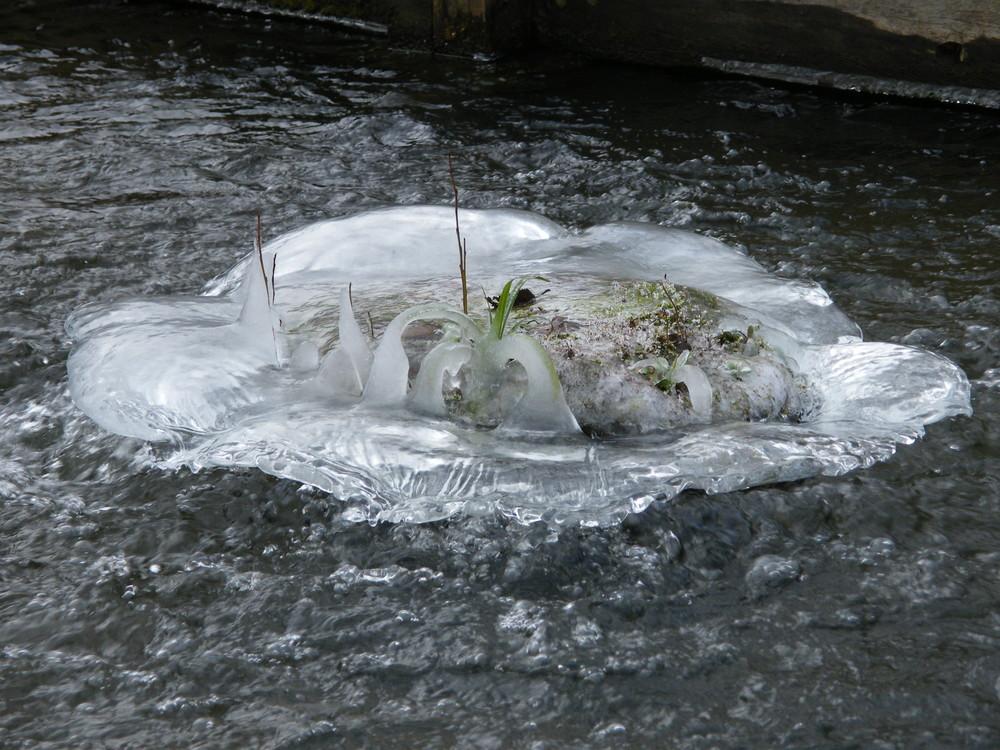 Eine Insel aus Eis